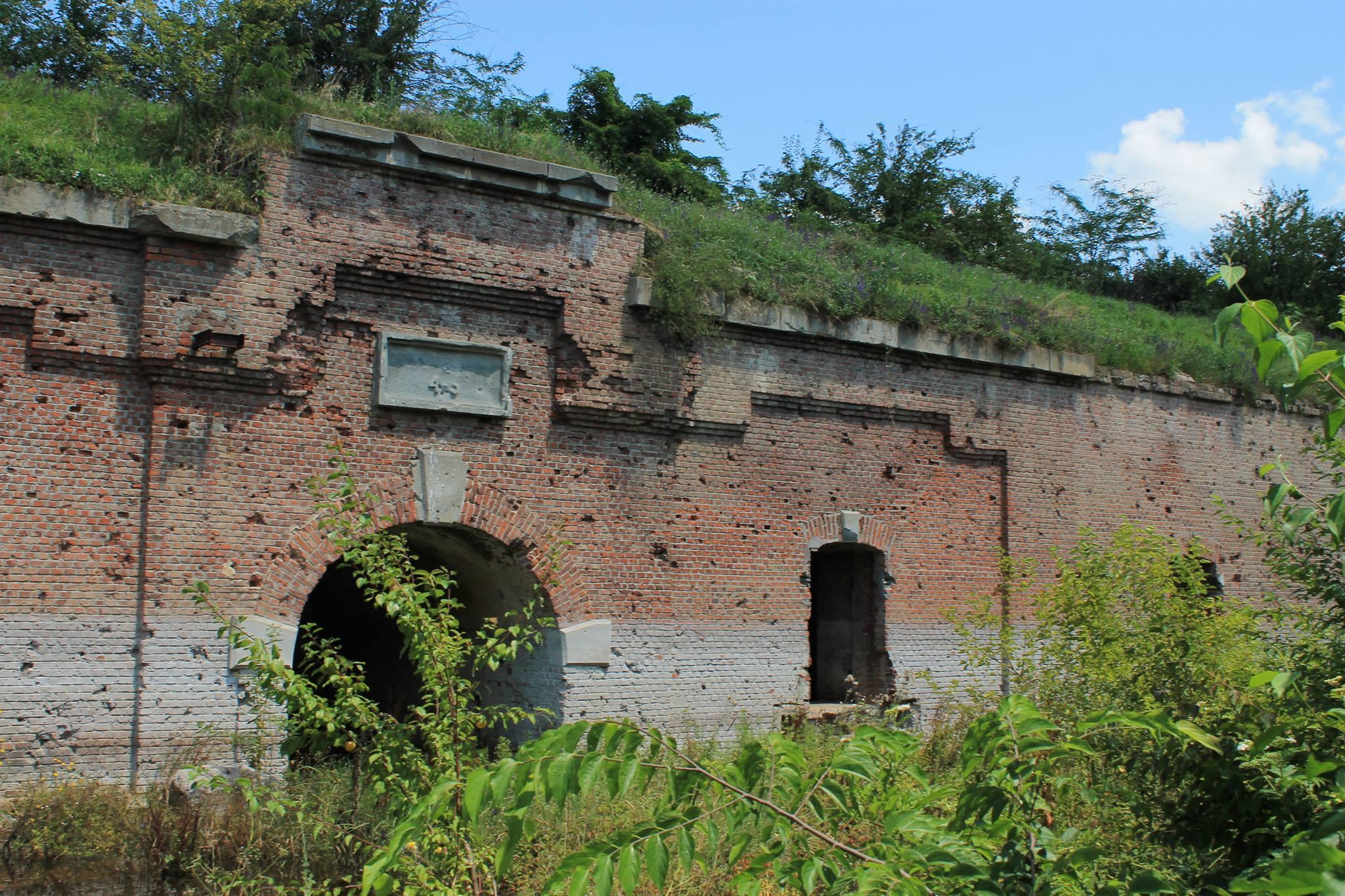 opțiuni săptămânale pe forturi tranzacționează zilnic opțiuni binare