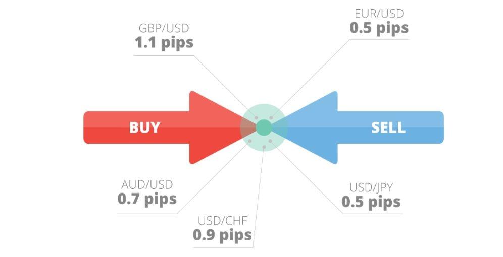 ce este un ordin în tranzacționare câștigurile financiare pe internet