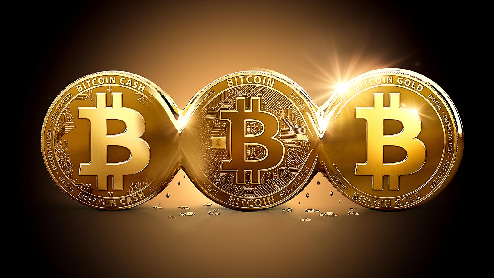 cum să câștigi bitcoin 2020 cum să faci bani și să economisești internetul