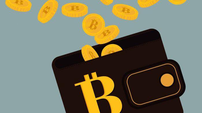 alegerea unui portofel Bitcoin rfr kturj face bani online