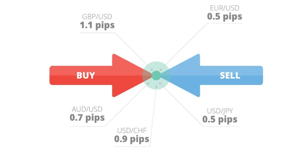 elementele de bază privind tranzacționarea opțiunilor semnale de opțiuni binare verificate