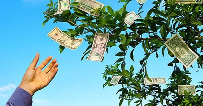 ideile fac banii ușori