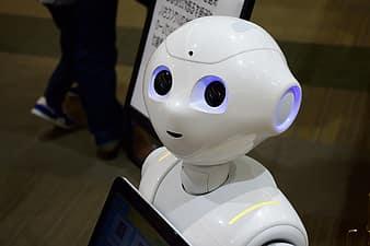 Robotul Titan la City Park Mall • City Park Mall