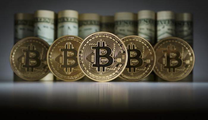 cum să faci bani pe internet la 16 ani obține bitcoin este cât de mult satoshi